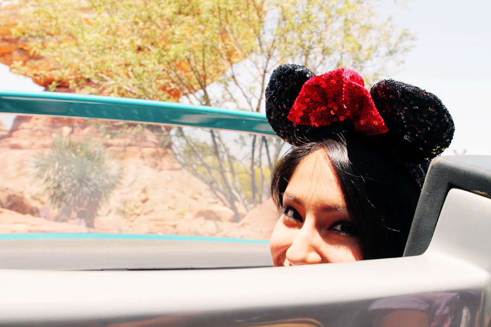 Disneyland_TeamStylesmith_1