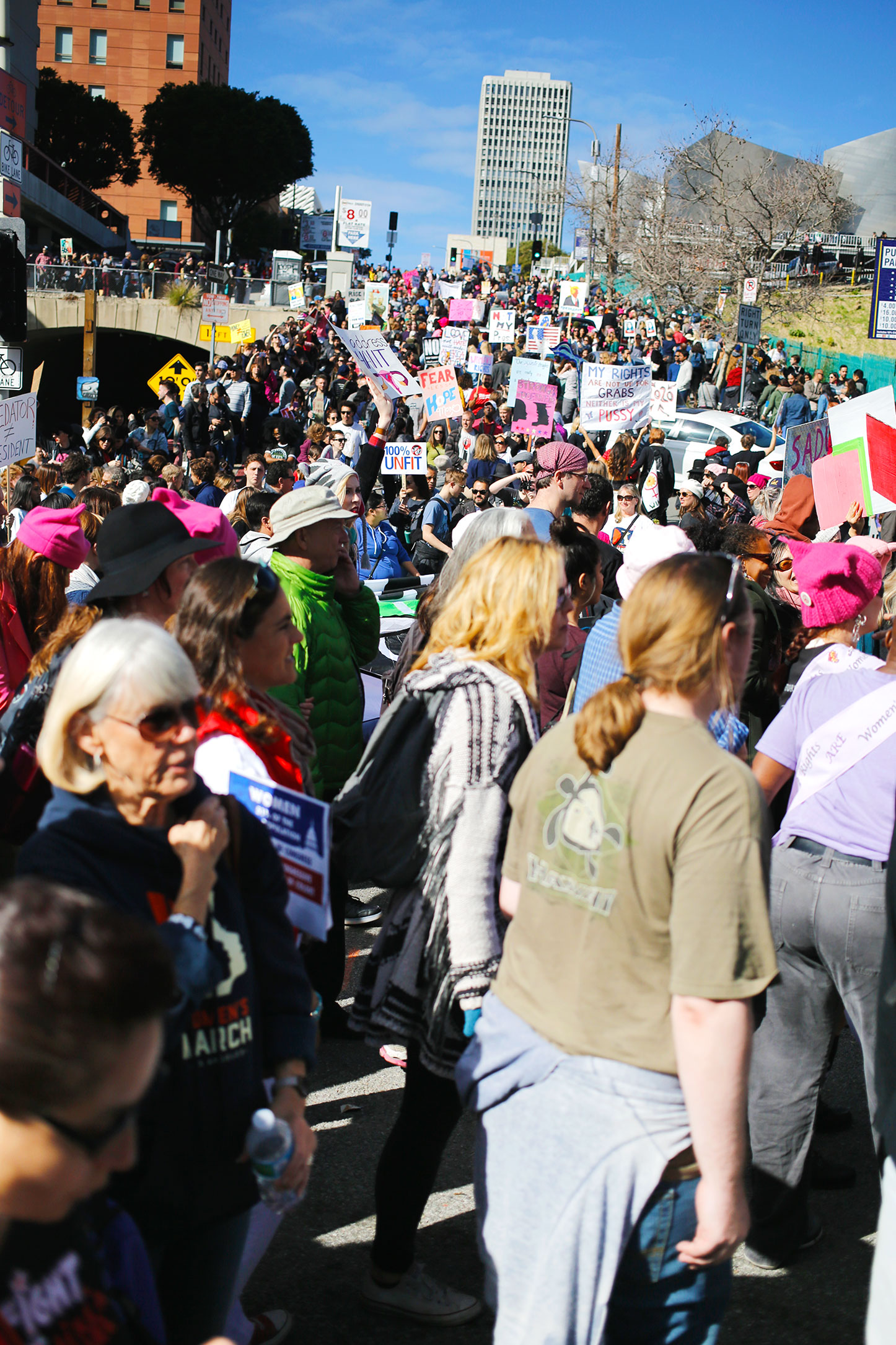 Womens_March_Los_Angeles_43